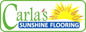CSSF Logo Filled